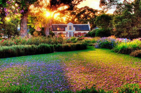 Cách làm đẹp vườn nhà chỉ trong nháy mắt